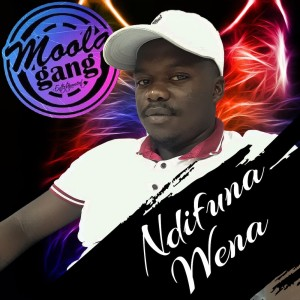 Album Ndifuna Wena Single from Moola Gang