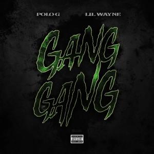 Album GANG GANG from Lil Wayne