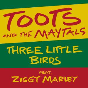 Album Three Little Birds (feat. Ziggy Marley) from Ziggy Marley