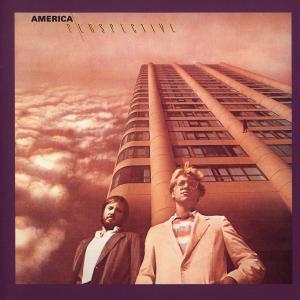Perspective 1984 America