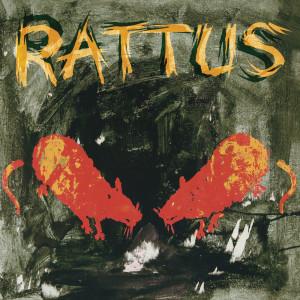 Rattus 2007 Rattus