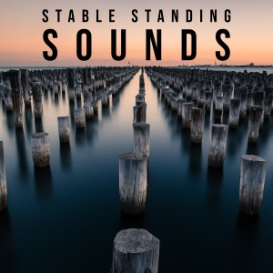 Album Stable Standing Sounds from Classical Lullabies