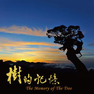 華語群星的專輯樹的記憶
