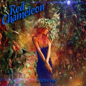 Album Sound (Chill Out Produced by Marc Hartman) from Red Chameleon