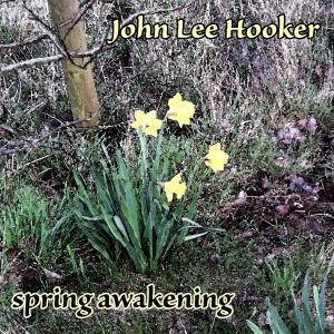 John Lee Hooker的專輯Spring Awakening