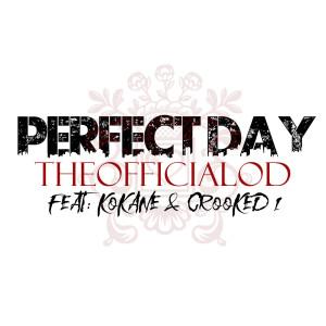 Album Perfect Day from Kokane