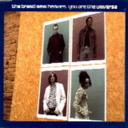 Album You Are the Universe from The Brand New Heavies
