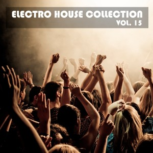 Romeo的專輯Electro House Collection, Vol. 15