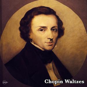Artur Rubinstein的專輯Chopin Waltzes