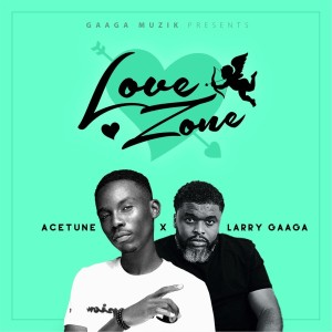 Album Love Zone from Larry Gaaga