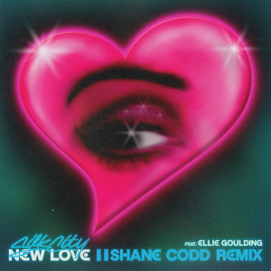 Diplo的專輯New Love (Shane Codd Remix)