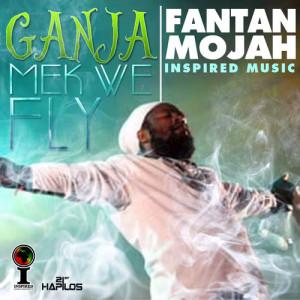 Album Ganja Mek We Fly from Fanton Mojah