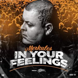 Album In Your Feelings (Explicit) from Merkules