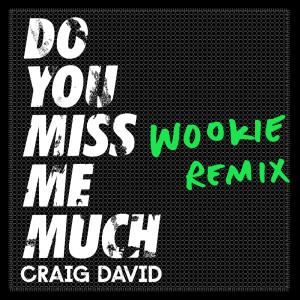 Do You Miss Me Much (Wookie Remix) dari Craig David