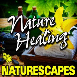 Naturescape的專輯Nature Healing (Nature Sounds)