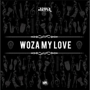 Album Woza My Love Single from Blaq Diamond
