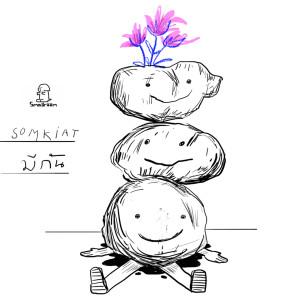 อัลบัม มีกัน ศิลปิน Somkiat