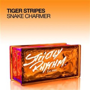 Listen to Snake Charmer song with lyrics from Tiger Stripes