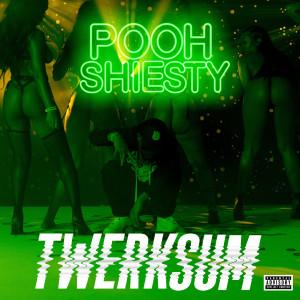 Album Twerksum from Pooh Shiesty