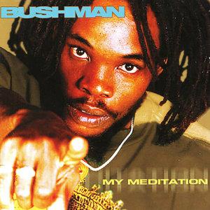 Album My Meditation from Bushman