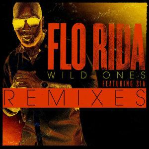 Listen to Wild Ones (feat. Sia) (Basto Remix) song with lyrics from Flo Rida
