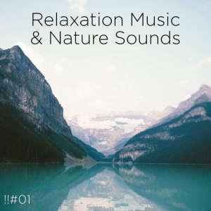 อัลบัม !!#01 Relaxation Music & Nature Sounds ศิลปิน Nature Sounds Nature Music