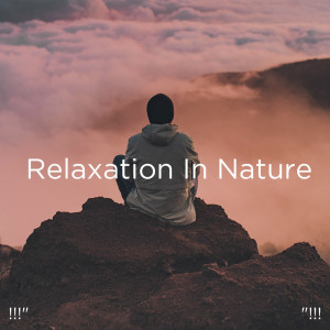 """Album !!!"""" Relaxation In Nature """"!!! from Sleep Sound Library"""