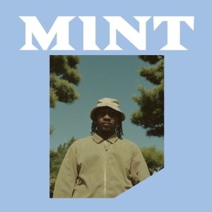 Album Mint (Explicit) from syd B