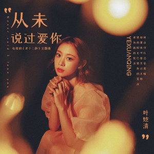 叶炫清的專輯從未説過愛你