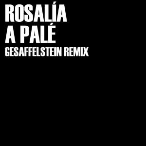 Album A Palé (Gesaffelstein Remix) from Gesaffelstein