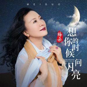 梅朵的專輯想你的時候問月亮