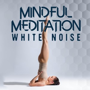 Listen to White Noise: Kettles song with lyrics from Sounds of Nature White Noise for Mindfulness Meditation and Relaxation