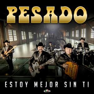 Album Estoy Mejor Sin Ti from Pesado