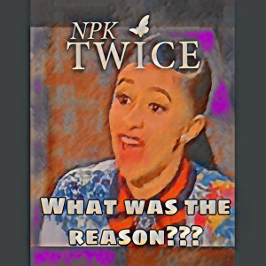 Album What Was the Reason from Npk Twice