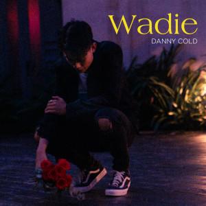 Album WADIE (Explicit) from Jayh