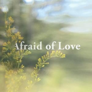 Album Afraid of Love from Beta Radio