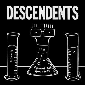 Listen to Beyond The Music song with lyrics from Descendents