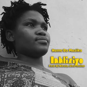 Album Inhliziyo from Hume Da Muzika