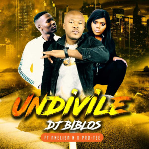 Listen to Undivile song with lyrics from DJ Biblos