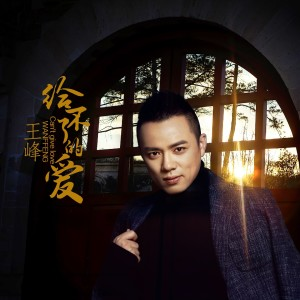 王峰的專輯給不了的愛