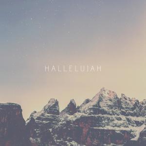 Album Hallelujah from Ben Laver