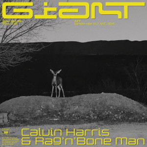 Giant 2019 Calvin Harris; Rag'N'Bone Man