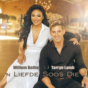 Listen to 'n Liefde Soos Die song with lyrics from Willem Botha