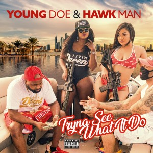 Album Tryna See What It Do (Single) from Young Doe