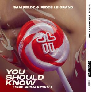 Fedde Le Grand的專輯You Should Know (feat. Craig Smart)