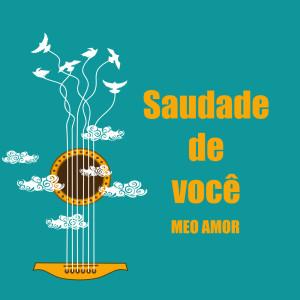 Album Saudade de você meo amor from Various Artists