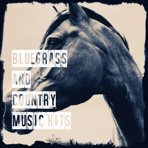 Album Bluegrass and Country Music Hits from Country And Western