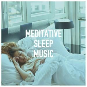 Album Meditative Sleep Music from Calm Meditation