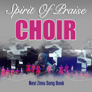 Album Neyi Zimu Song Book from Spirit of Praise