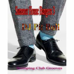 Album Summer House Bangers 3 from DJ Pit Bull